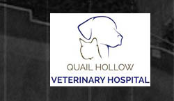 Quail Hollow Veterinary Hospital